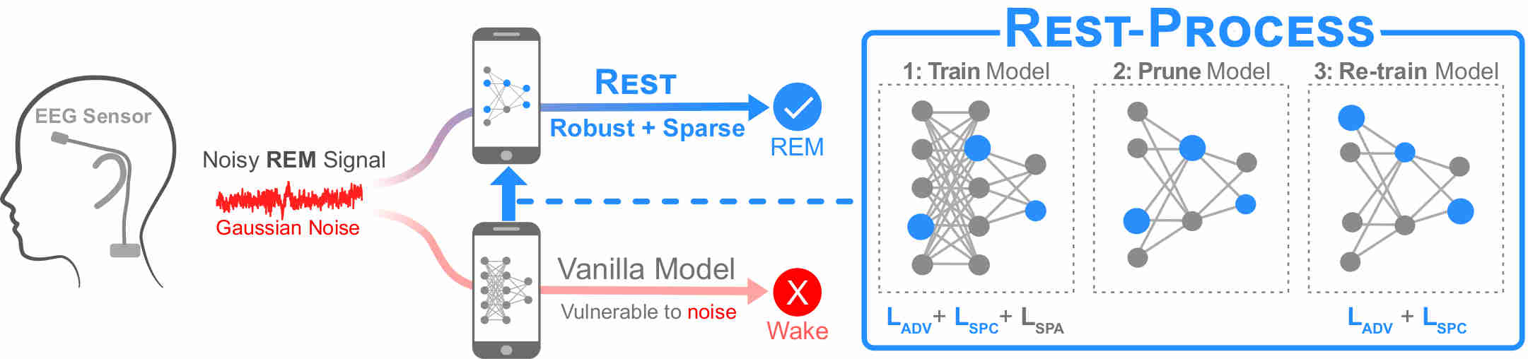 REST: Robust and Efficient Neural Networks for Sleep Monitoring in the Wild