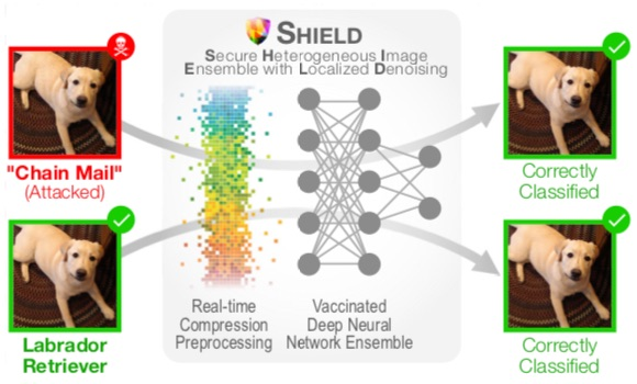 SHIELD: Fast, practical defense for deep learning